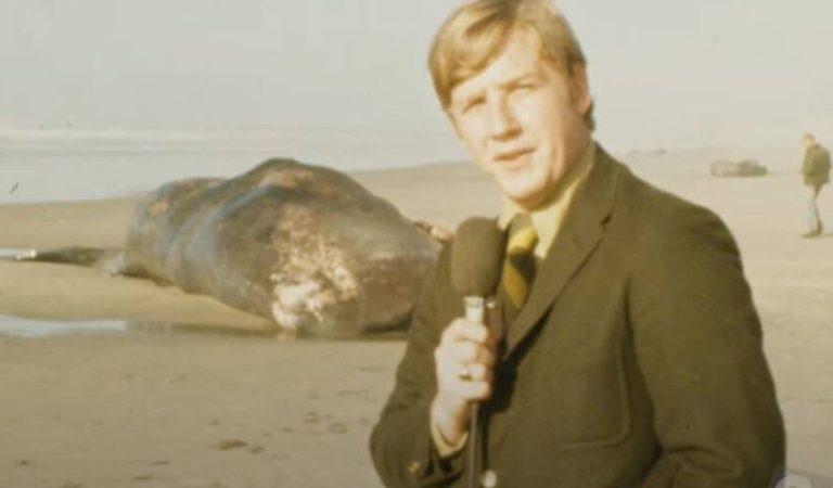 10 Unbelievable Details Surrounding Oregon's Exploding Whale
